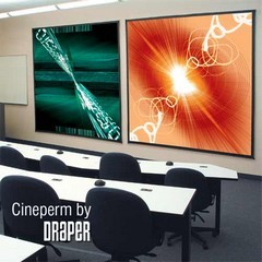 Draper 250109 Cineperm Fixed, 10 Foot Video Format ClearSound White Weave XT900E Surface