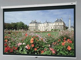 Da-Lite 92738 Deluxe Model B 84 Inch Diagonal 50-6x67 Video Format High Contrast Matte White Surface