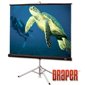 Draper 213026 Diplomat Portable, 96 in. x 96 in. AV Format Contrast Grey XH800E Surface