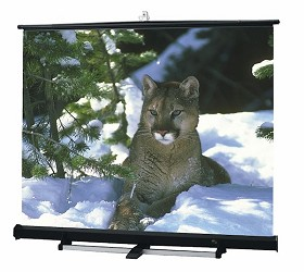 Draper 211017 Luma 2/R Portable, 8 Foot x 10 Foot AV Format Matt White XT1000E Surface Black Carpeted Case